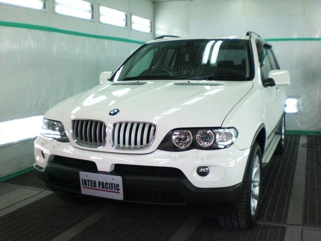 BMW X5-20090428